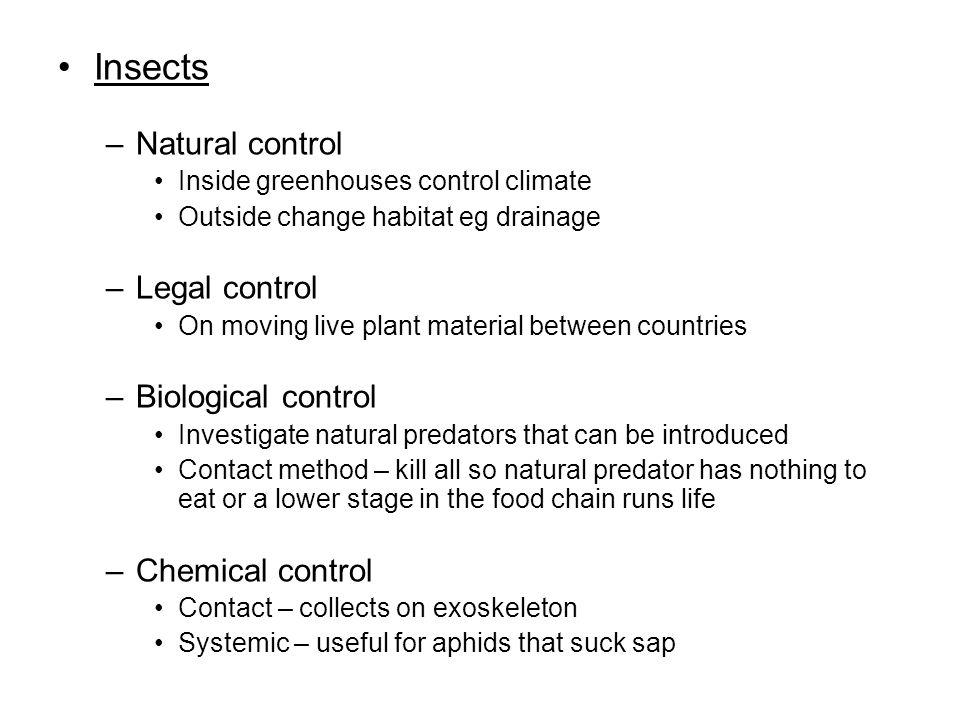 Insects –Natural control Inside greenhouses control climate Outside change habitat eg drainage –Legal control On moving live plant material between countries –Biological control Investigate natural predators that can be introduced Contact method – kill all so natural predator has nothing to eat or a lower stage in the food chain runs life –Chemical control Contact – collects on exoskeleton Systemic – useful for aphids that suck sap