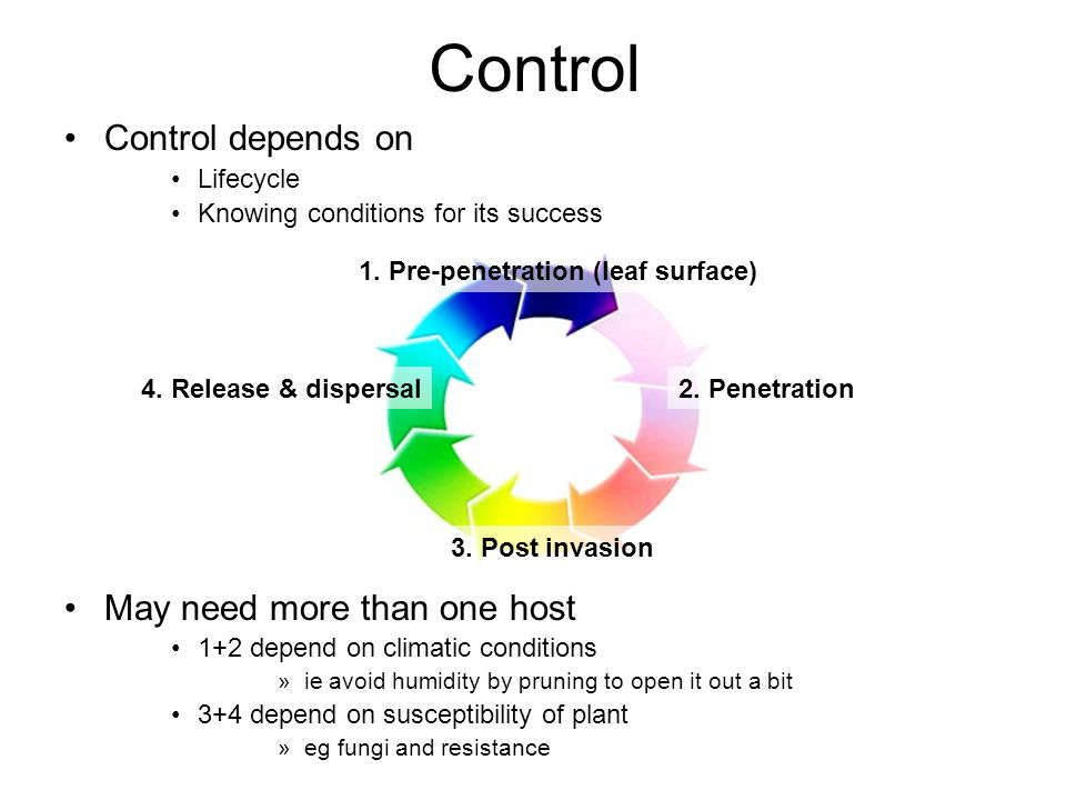 Control Control depends on Lifecycle Knowing conditions for its success May need more than one host 1+2 depend on climatic conditions »ie avoid humidity by pruning to open it out a bit 3+4 depend on susceptibility of plant »eg fungi and resistance 1.