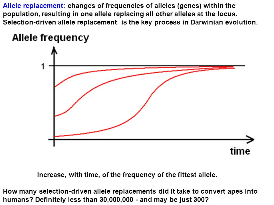 Allele replacement: changes of frequencies of alleles (genes) within the population, resulting in one allele replacing all other alleles at the locus.