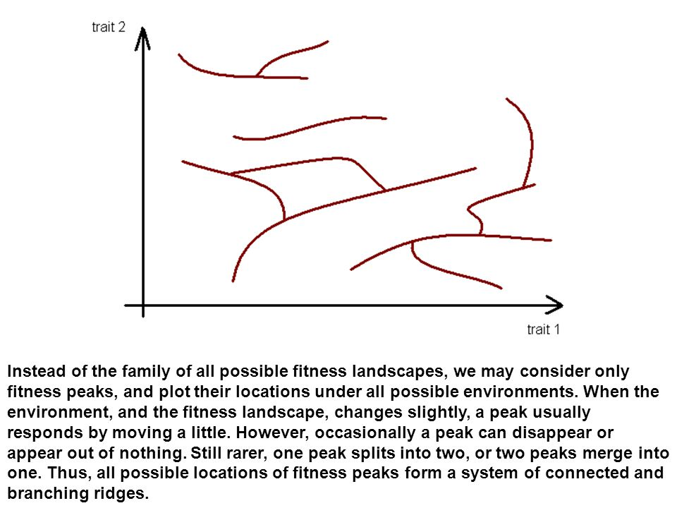 Instead of the family of all possible fitness landscapes, we may consider only fitness peaks, and plot their locations under all possible environments.
