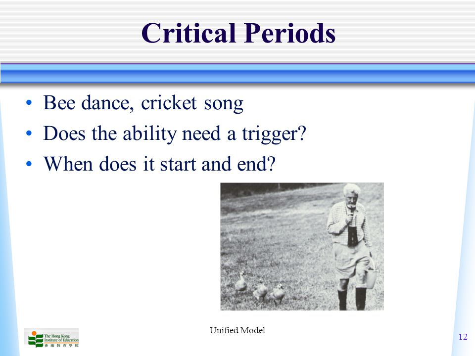 Unified Model 12 Critical Periods Bee dance, cricket song Does the ability need a trigger.