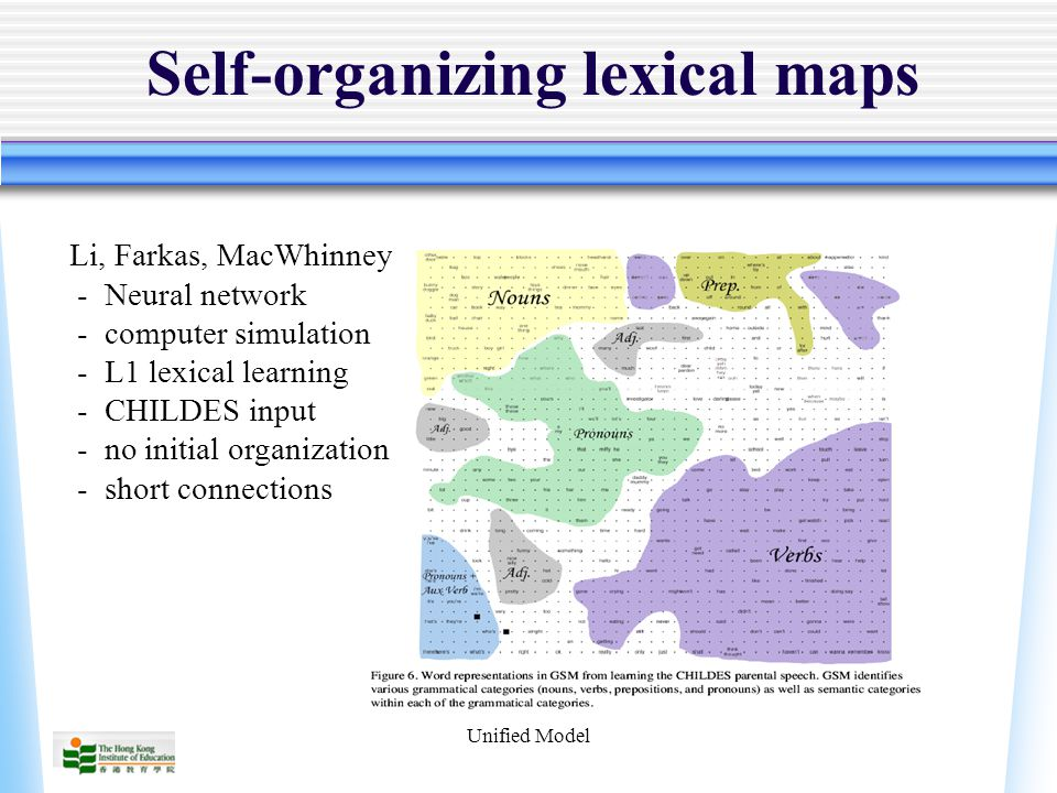 Unified Model Self-organizing lexical maps Li, Farkas, MacWhinney - Neural network - computer simulation - L1 lexical learning - CHILDES input - no initial organization - short connections