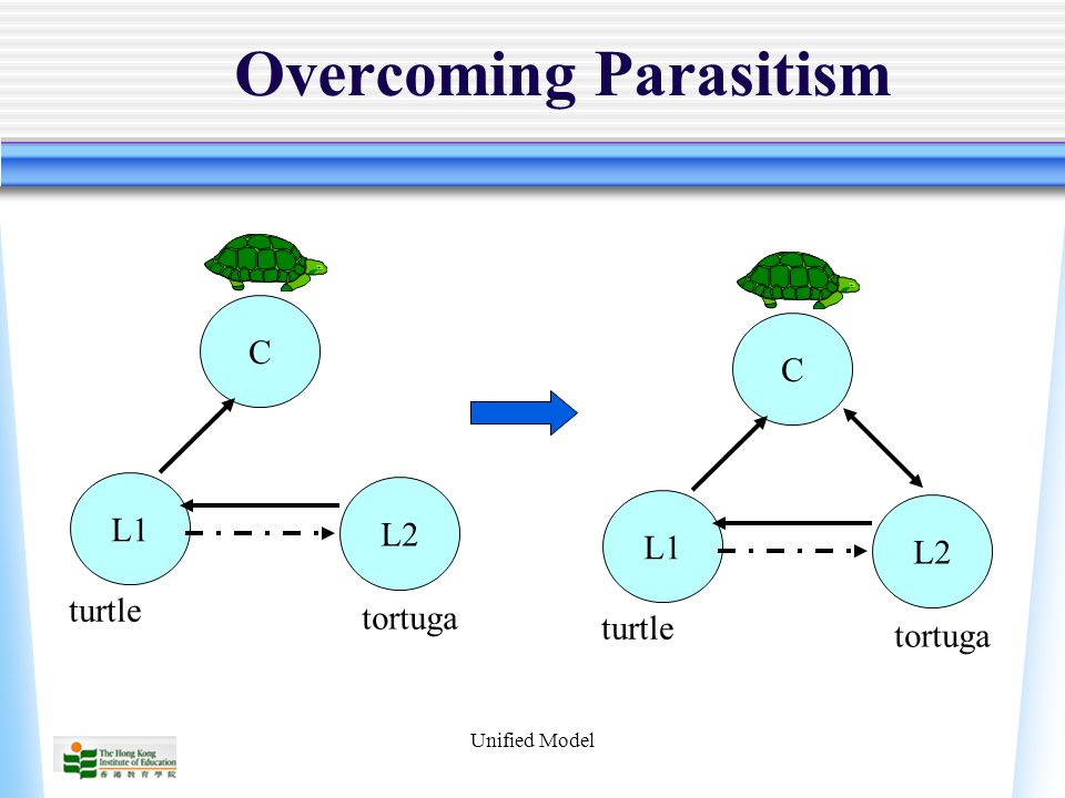Unified Model Overcoming Parasitism CL2L1 turtle tortuga CL2L1 turtle tortuga