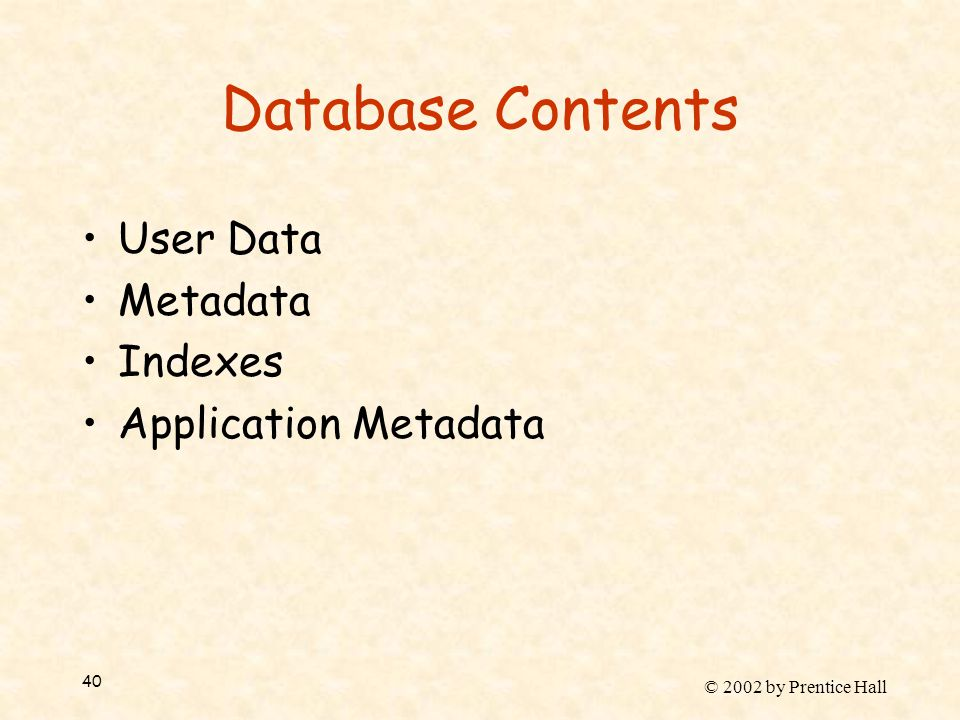 © 2002 by Prentice Hall 40 Database Contents User Data Metadata Indexes Application Metadata