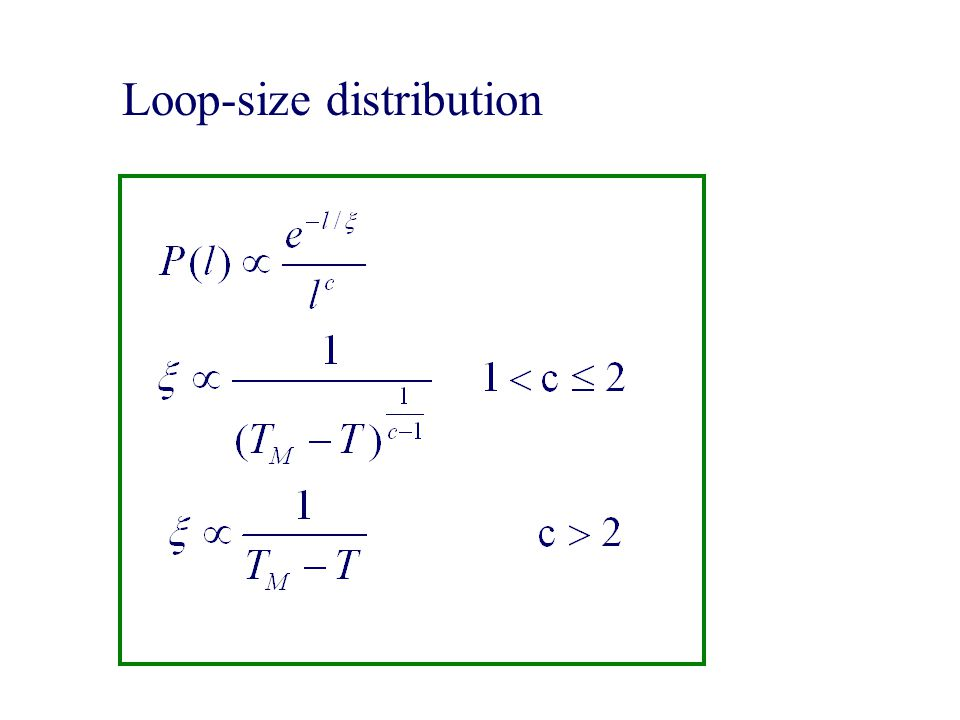 Loop-size distribution
