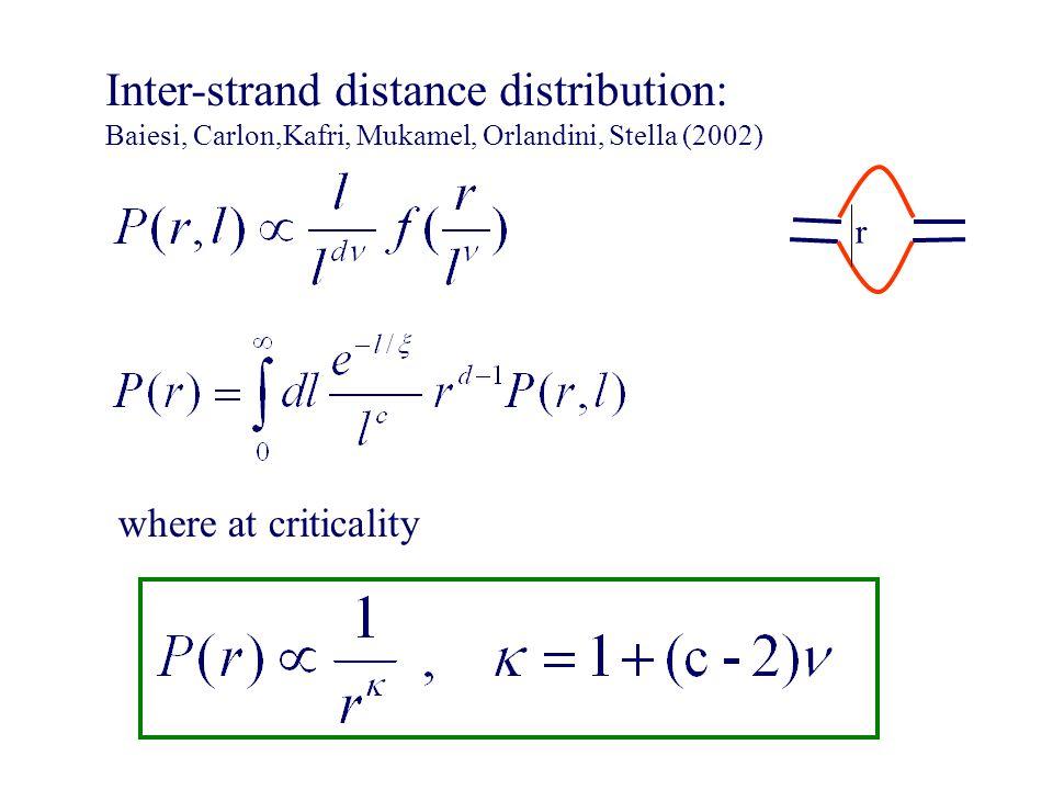 Inter-strand distance distribution: Baiesi, Carlon,Kafri, Mukamel, Orlandini, Stella (2002) r where at criticality