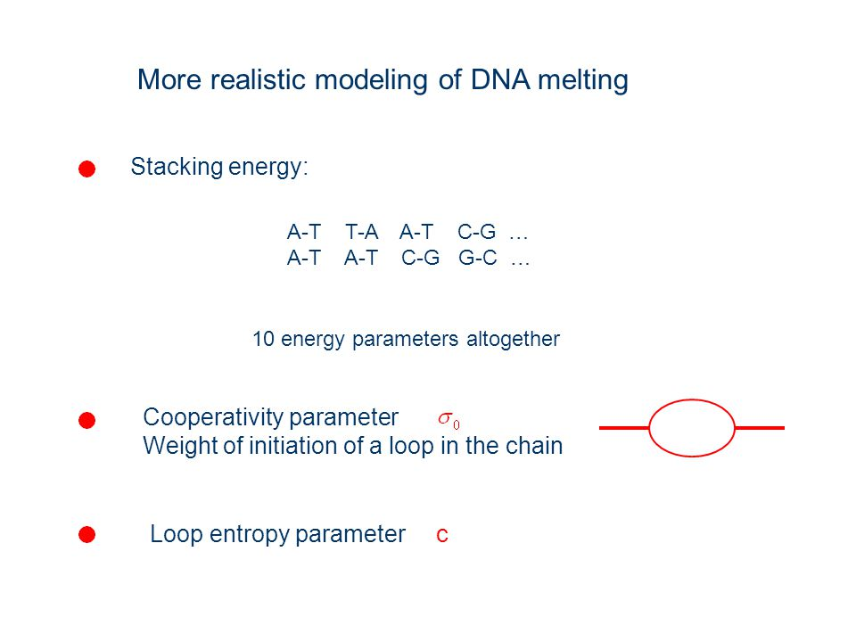 More realistic modeling of DNA melting Stacking energy: A-T T-A A-T C-G … A-T A-T C-G G-C … 10 energy parameters altogether Cooperativity parameter We