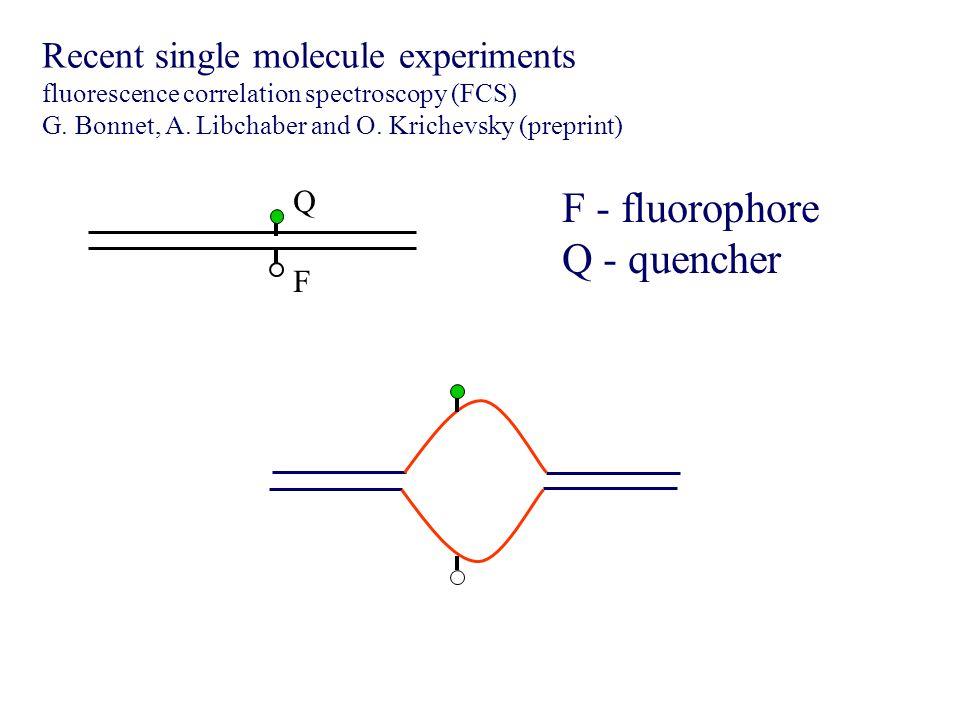 F Q Recent single molecule experiments fluorescence correlation spectroscopy (FCS) G.