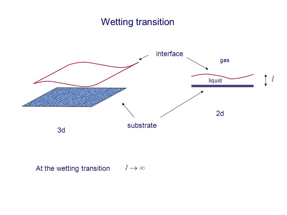 Wetting transition substrate interface 3d 2d gas liquid At the wetting transition