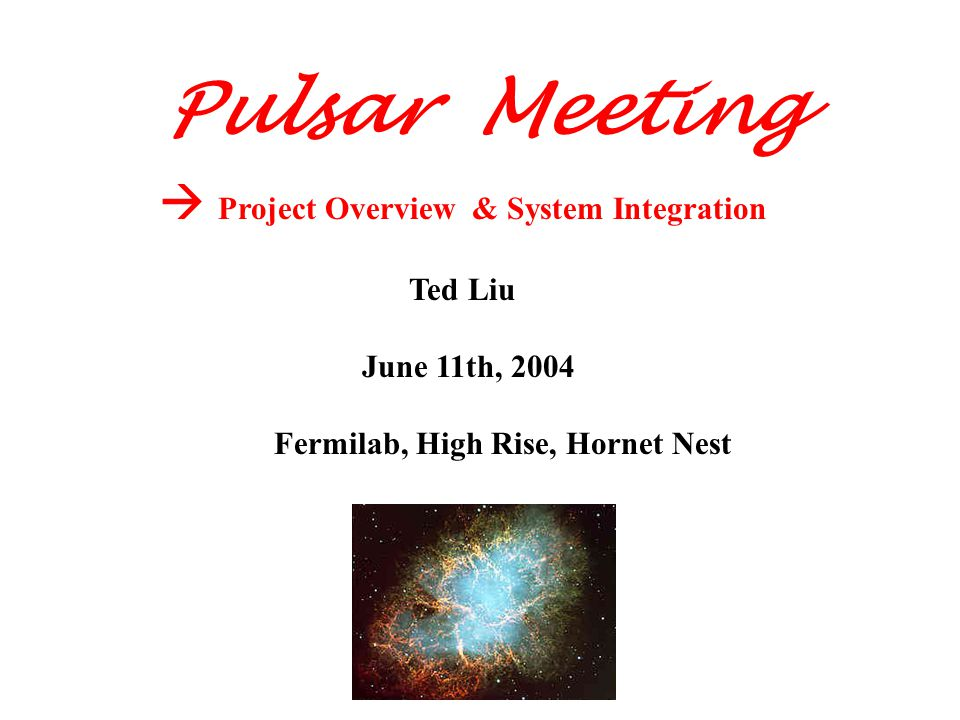  Project Overview & System Integration Ted Liu June 11th, 2004 Fermilab, High Rise, Hornet Nest Pulsar Meeting