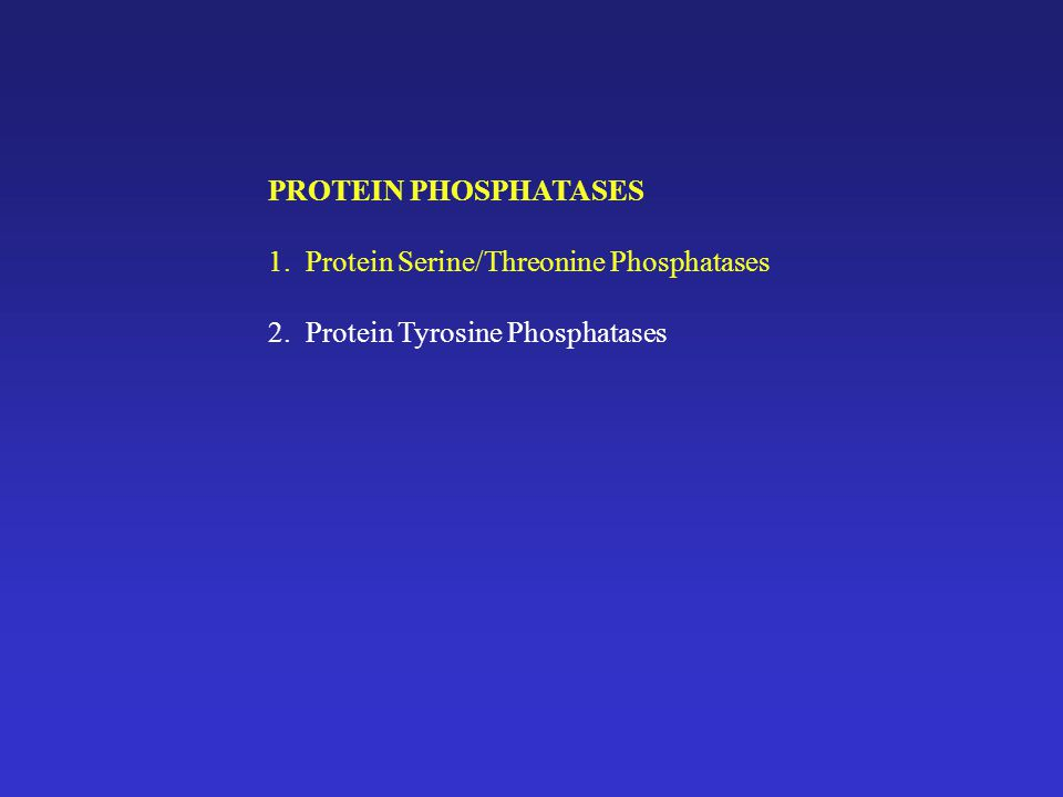 PROTEIN TYROSINE PHOSPHATASES Phospho-tyrosine 0.01-0.05% cellular phosphamino acids Increases to 1-3% upon transformation by oncogenic viruses **RSV src gene and EGF receptor shown in 80s to be tyrosine kinases 1988 PTPase 1B was purified from placenta and aa sequence determined {Tonks, Diltz and Fischer, JBC 263:6722 and 263:6731 (1988)} ** not similar to serine/threonine phosphatases at active site ** region of similarity to major lymphocyte cell surface glycoprotein CD45 (LCA) -LCA heavily glycosylated -differentially spliced extracellular domain -single transmembrane domain -cytosolic domain containing 2 repeats of a 200 aa domain with identity to PTP1B -antibody studies suggested that CD45 was involved in early lymphocyte activation -LCA and LAR (leuk Ag-related) had PTPase activity in vitro and a 200 aa conserved catalytic domain