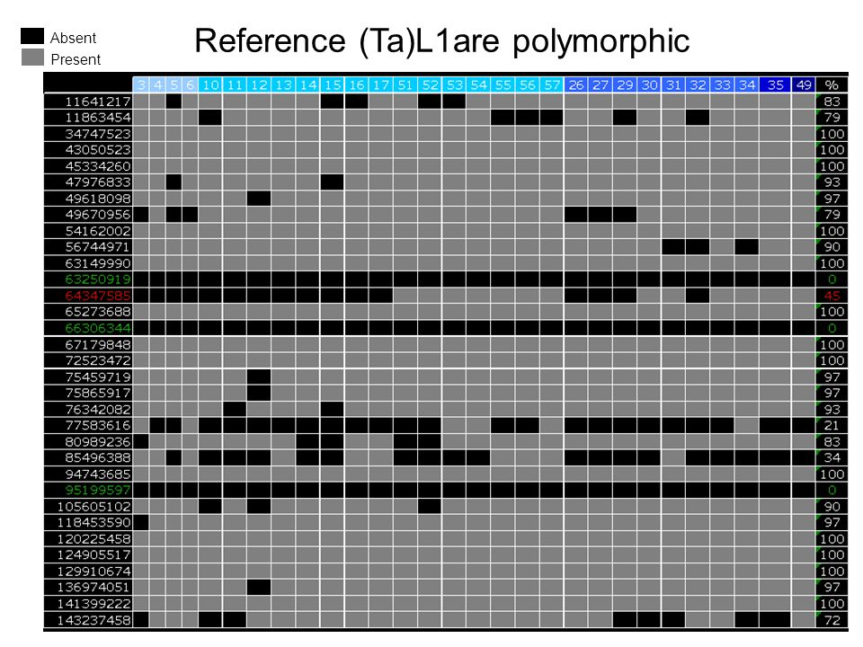 Reference (Ta)L1are polymorphic Absent Present