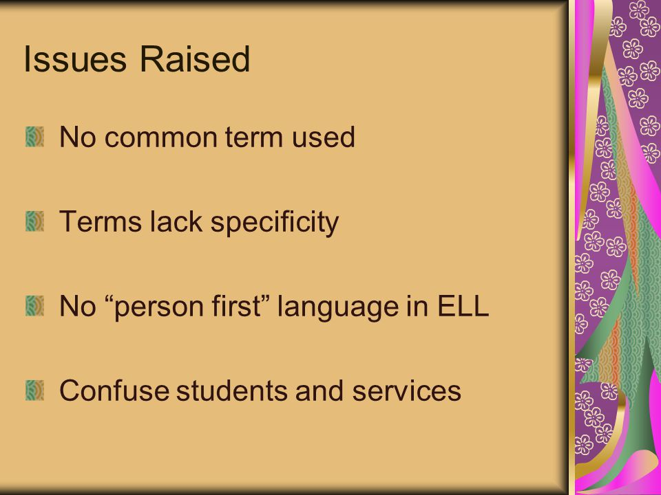 Issues Raised No common term used Terms lack specificity No person first language in ELL Confuse students and services