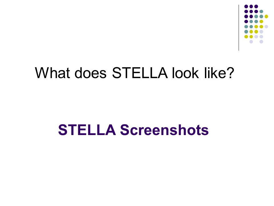 STELLA Screenshots What does STELLA look like?
