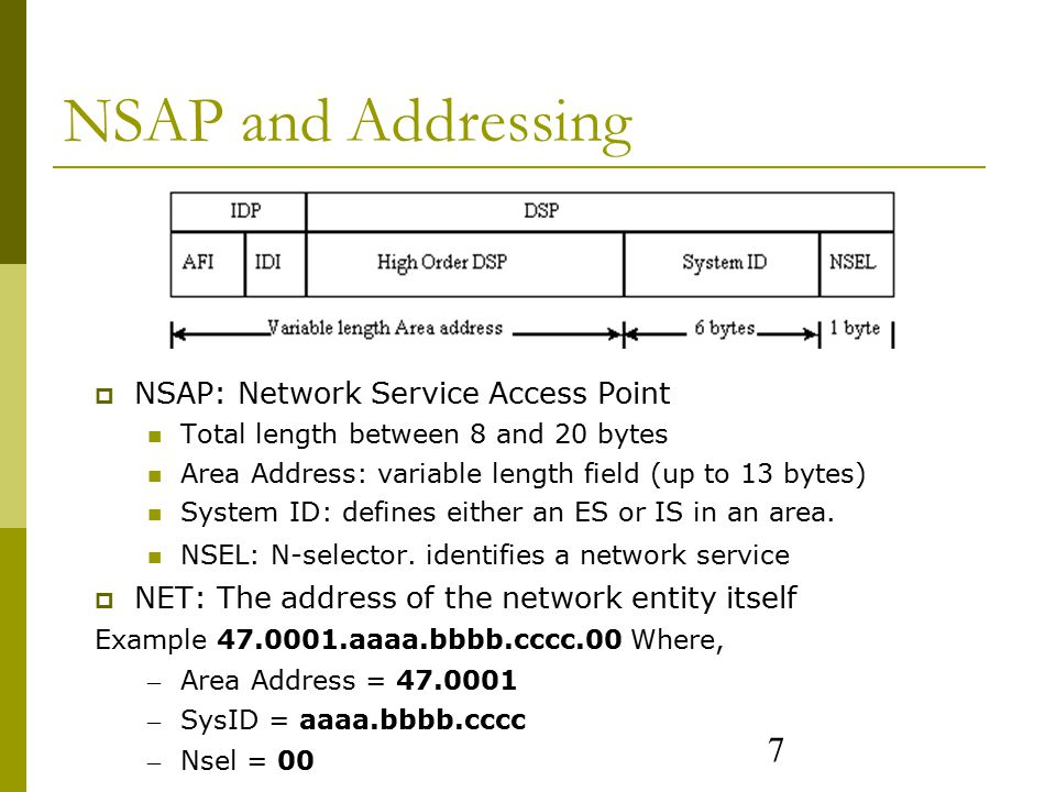 7 NSAP and Addressing  NSAP: Network Service Access Point Total length between 8 and 20 bytes Area Address: variable length field (up to 13 bytes) System ID: defines either an ES or IS in an area.
