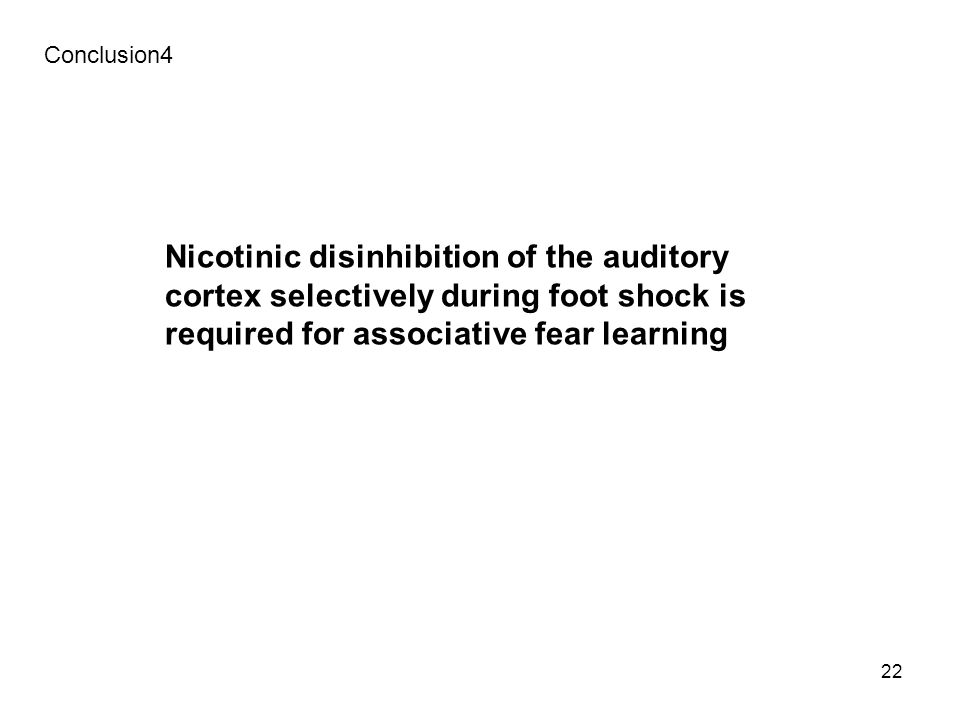 22 Conclusion4 Nicotinic disinhibition of the auditory cortex selectively during foot shock is required for associative fear learning