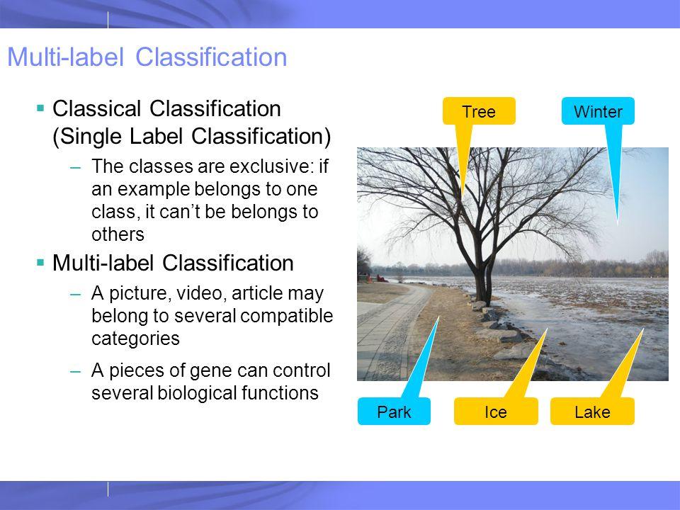 Multi-label Random Decision Tree F1<0.5 F2>0.7 F3>0.3 Y Y N N N … L1+:30 L1-: 70 L2+:50 L2-: 50 L1+:200 L1-: 10 L2+:40 L2-: 60 F3>0.5 F2<0.7 F1>0.7 Y Y N N N … L1+:30 L1-: 20 L2+:20 L2-: 80 L1+:100 L1-:120 L1+:200 L1-: 10 P(L1+ x)=30/100=0.3P'(L1+ x)=30/50 =0.6 P(L2+ x)=50/100=0.5P'(L2+ x)=20/100=0.2 (P(L1+ x)+P'(L1+ x))/2 = 0.45 (P(L2+ x)+P'(L2+ x))/2 = 0.35