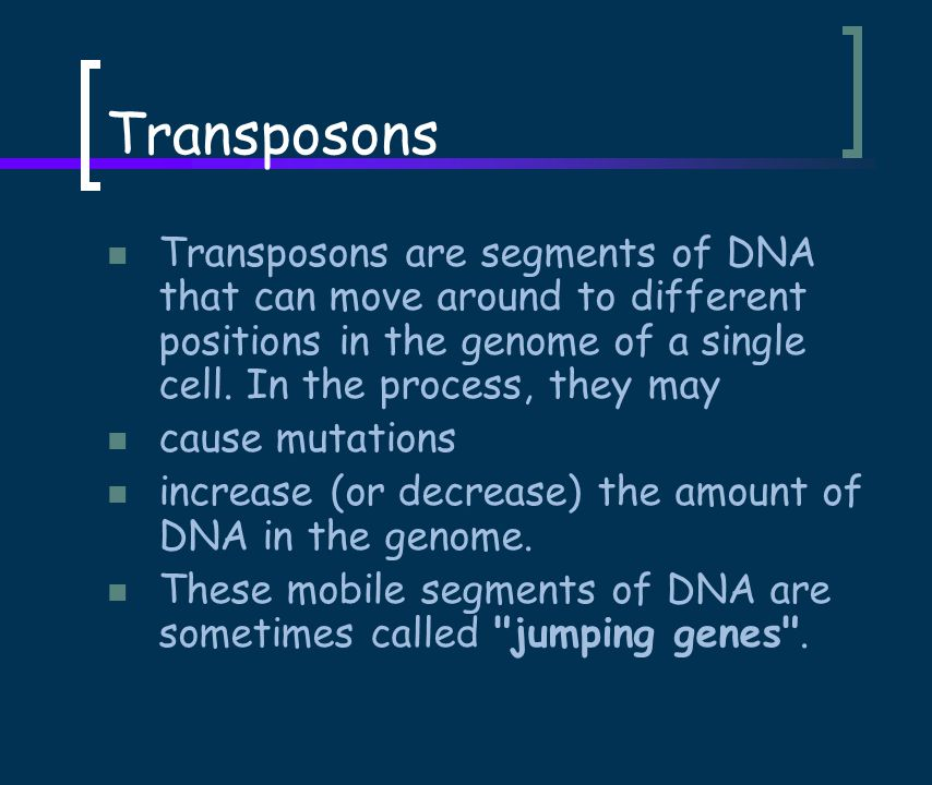Transposons Transposons are segments of DNA that can move around to different positions in the genome of a single cell.