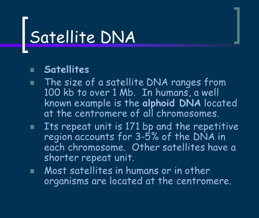 Satellite DNA Satellites The size of a satellite DNA ranges from 100 kb to over 1 Mb.