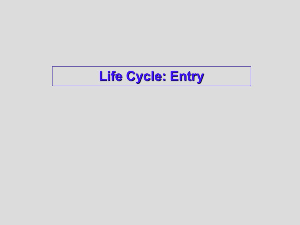 Life Cycle: Entry