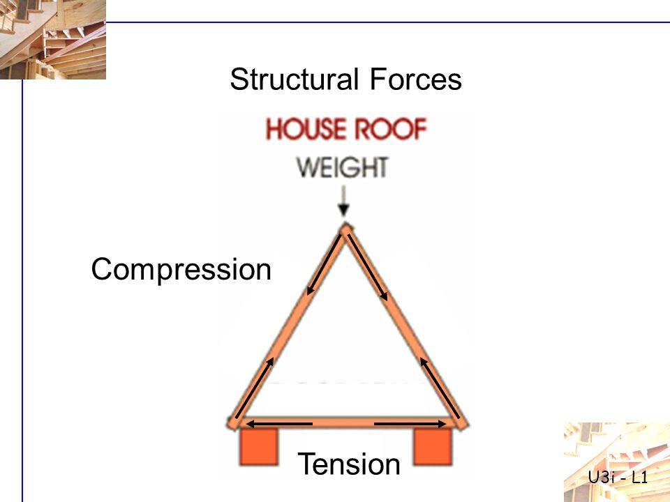 Structural Forces Compression Tension U3i - L1
