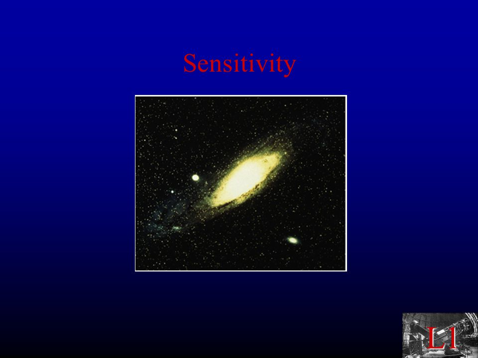 L1 Sensitivity