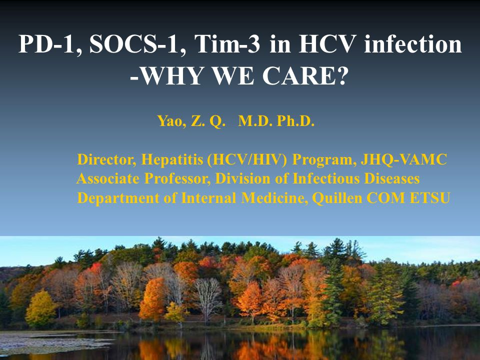 PD-1, SOCS-1, Tim-3 in HCV infection -WHY WE CARE.