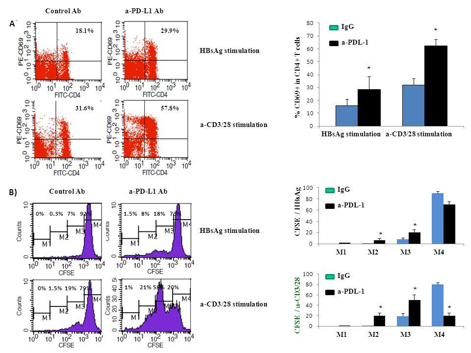 A) 29.9%18.1% 1.5% 8% 18% 73% 0% 0.3% 7% 92% 0% 1.5% 19% 79% 1% 21% 58% 20% 57.8%31.6% Control Ab a-PD-L1 Ab HBsAg stimulation a-CD3/28 stimulation B) HBsAg stimulation a-CD3/28 stimulation Control Ab a-PD-L1 Ab HBsAg stimulation a-CD3/28 stimulation % CD69+ in CD4+ T cells * * * * * * * IgG a-PDL-1 IgG a-PDL-1 IgG a-PDL-1 M1 M2 M3 M4 M1 M2 M3 M4 CFSE / HBsAg CFSE / a-CD3/28