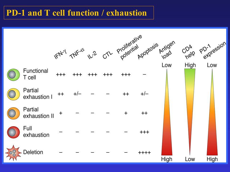 48 h after transfection 72 h after transfection Control siRNA SOCS-1 siRNA SOCS-1 β-Actin + + + + Core A) B) C) Isotype 0.73% LPS R848 Core control siRNA 39.1% LPS R848 Core SOCS-1 siRNA 2.9% Isotype 2.88% LPS R848 Core control siRNA 10.1% LPS R848 Core SOCS-1 siRNA 19.4% PD-1 Count IL-12 Count Silencing SOCS-1 inhibits PD-1 expression and improve IL-12 production