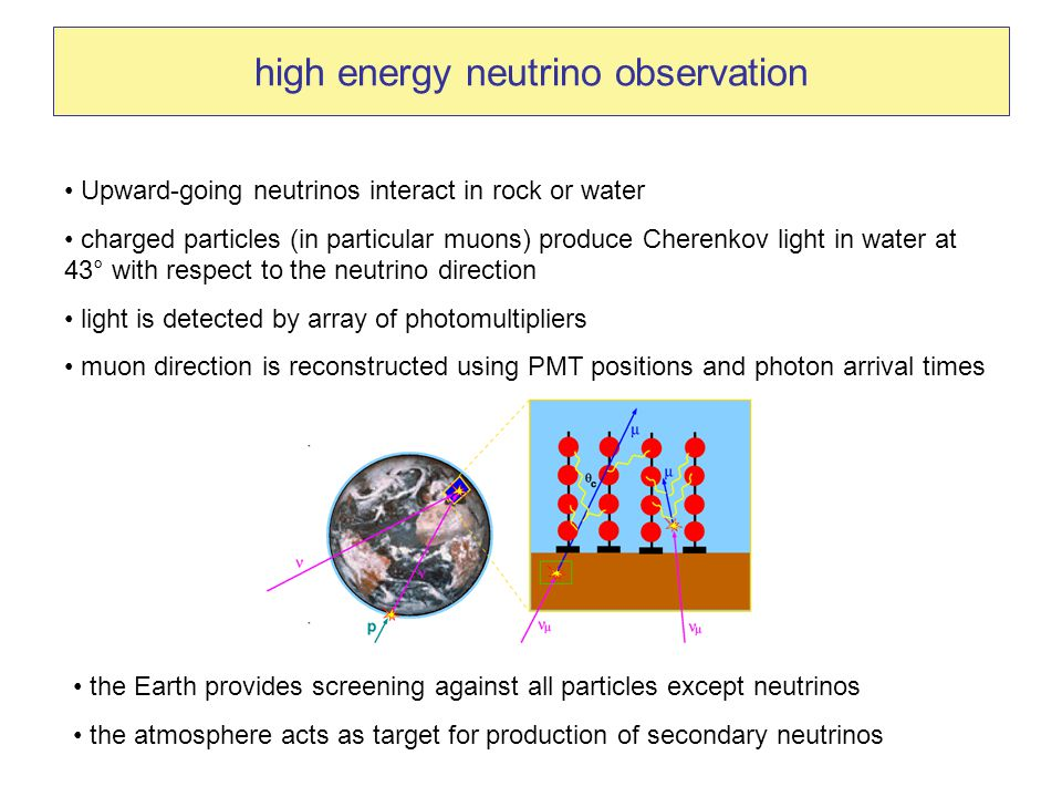 high energy neutrino observation Upward-going neutrinos interact in rock or water charged particles (in particular muons) produce Cherenkov light in water at 43° with respect to the neutrino direction light is detected by array of photomultipliers muon direction is reconstructed using PMT positions and photon arrival times the Earth provides screening against all particles except neutrinos the atmosphere acts as target for production of secondary neutrinos