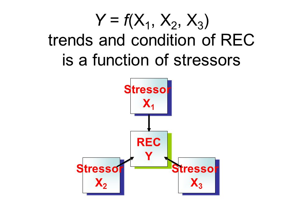 Y = f(X 1, X 2, X 3 ) trends and condition of REC is a function of stressors REC Y Stressor X1 Stressor X3 Stressor X2