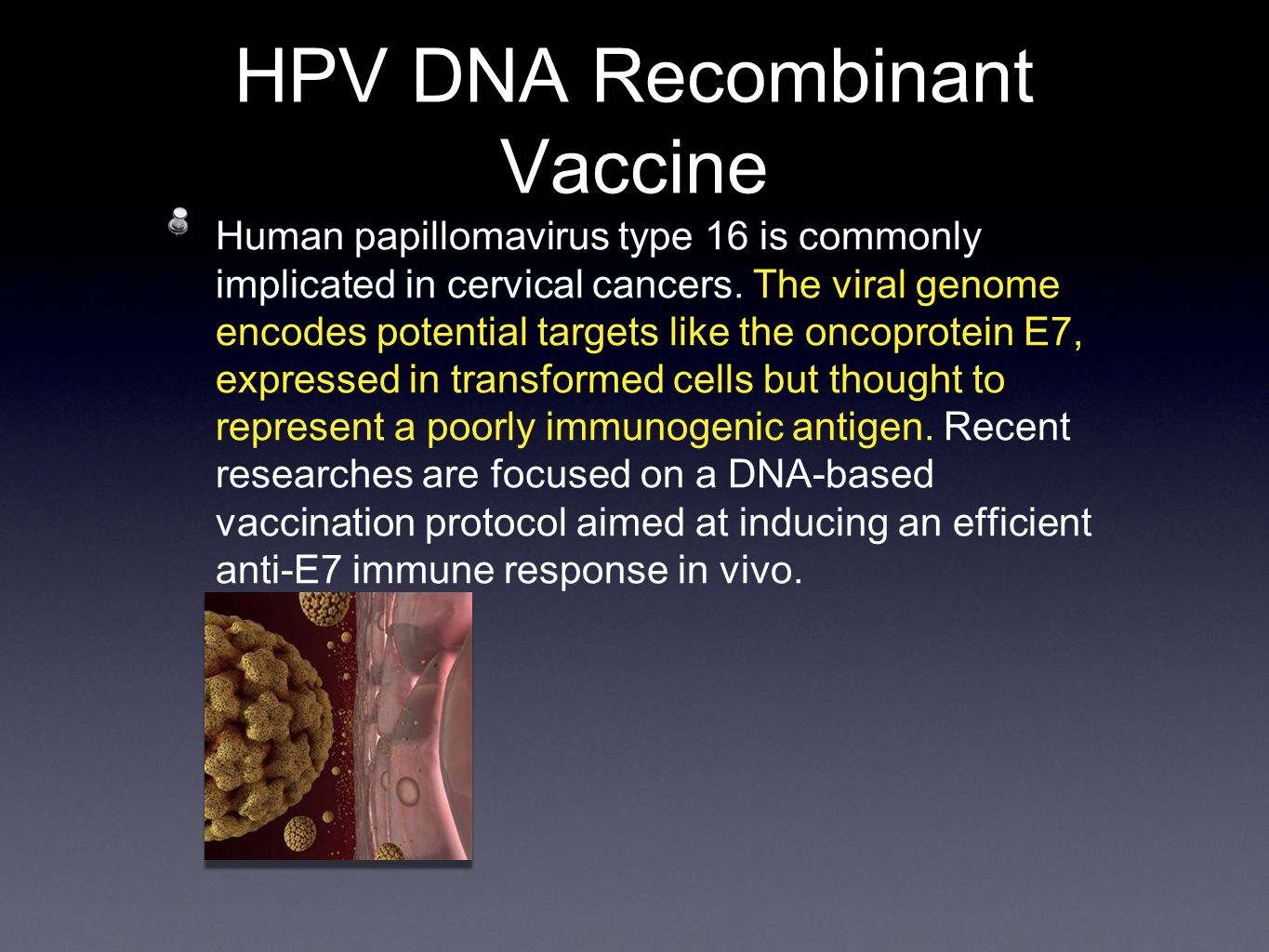 HPV DNA Recombinant Vaccine Human papillomavirus type 16 is commonly implicated in cervical cancers.