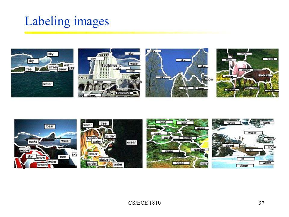 CS/ECE 181b37 Labeling images