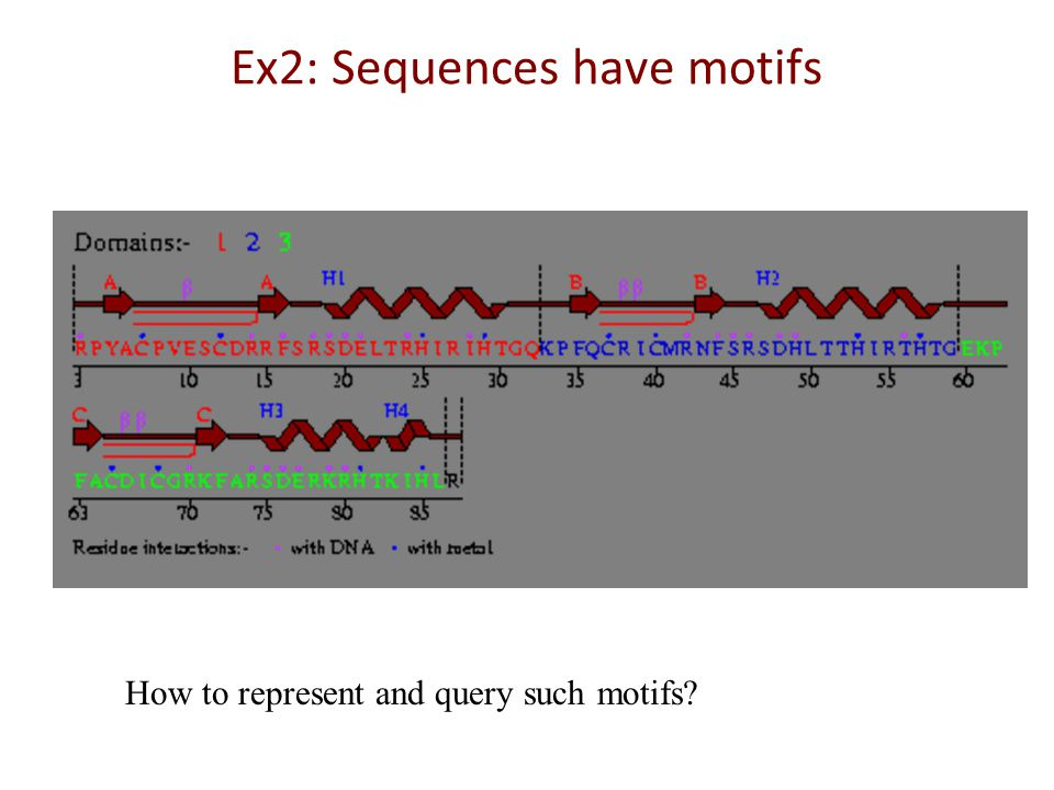 Protein Sequences have structure Quiz: Can you search using a structure query