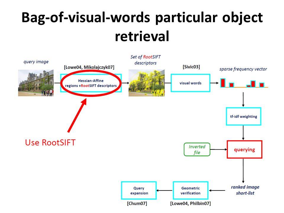 Bag-of-visual-words particular object retrieval