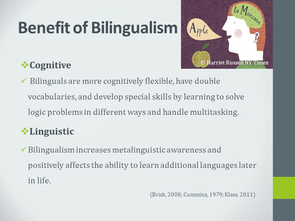 Benefit of Bilingualism  Cognitive Bilinguals are more cognitively flexible, have double vocabularies, and develop special skills by learning to solv