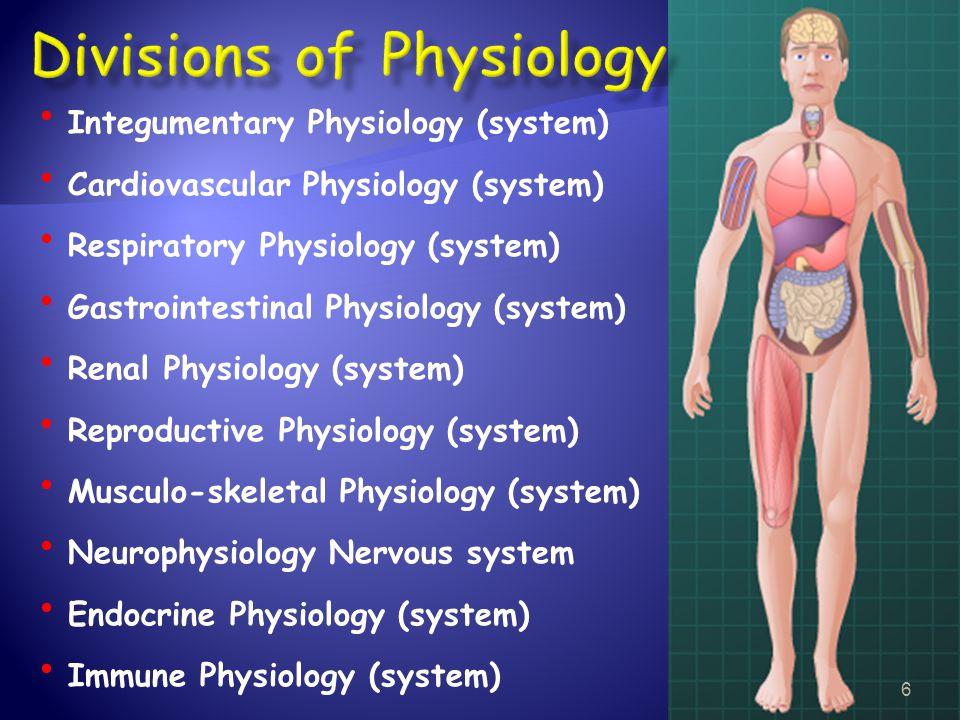 Integumentary Physiology (system) Cardiovascular Physiology (system) Respiratory Physiology (system) Gastrointestinal Physiology (system) Renal Physio