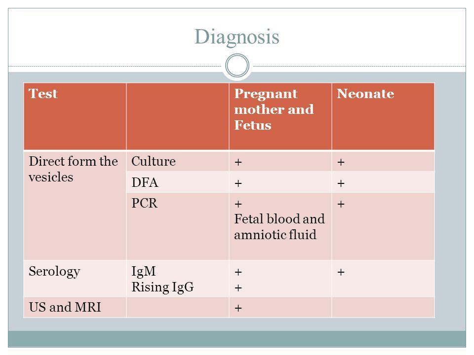 Diagnosis TestPregnant mother and Fetus Neonate Direct form the vesicles Culture++ DFA++ PCR+ Fetal blood and amniotic fluid + SerologyIgM Rising IgG