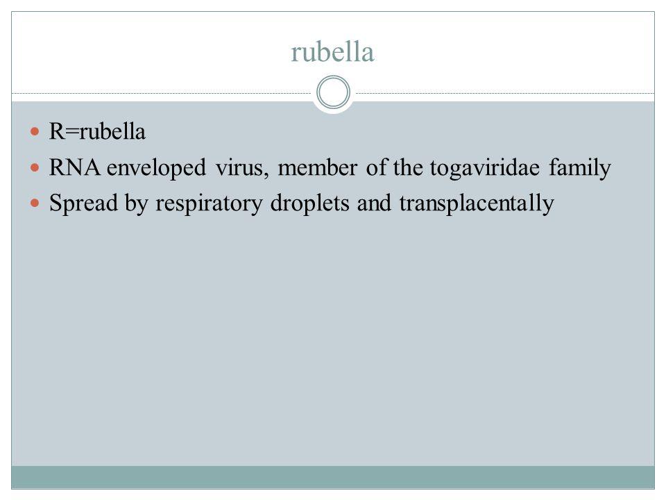 rubella R=rubella RNA enveloped virus, member of the togaviridae family Spread by respiratory droplets and transplacentally