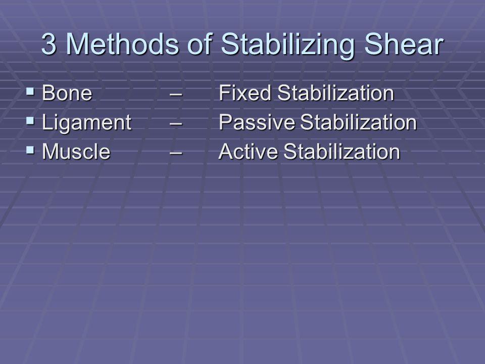 3 Methods of Stabilizing Shear  Bone– Fixed Stabilization  Ligament – Passive Stabilization  Muscle – Active Stabilization