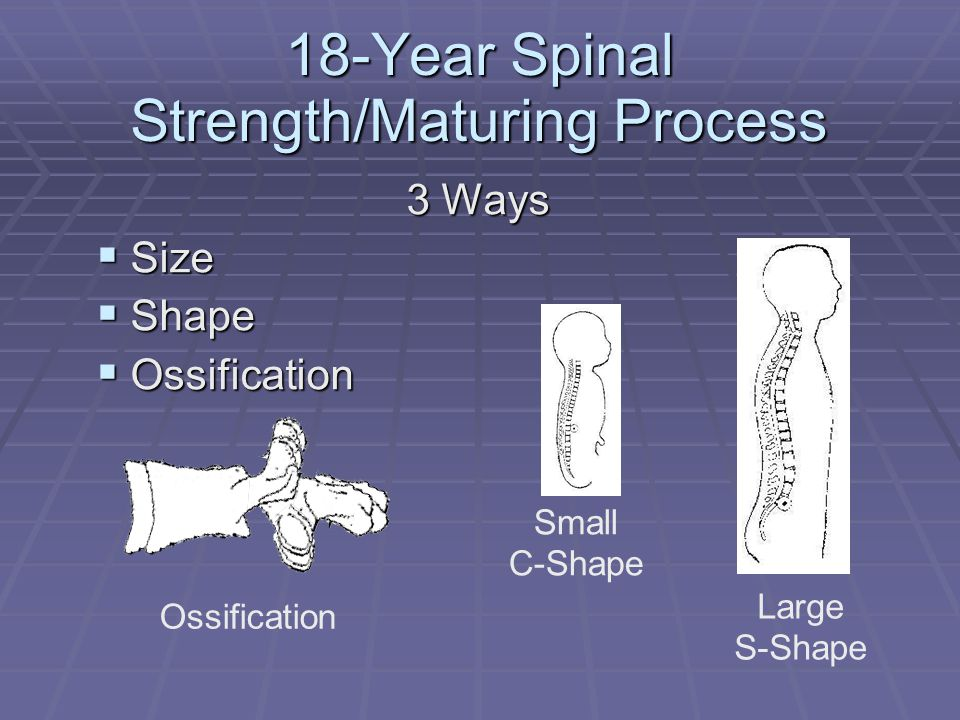 18-Year Spinal Strength/Maturing Process 3 Ways  Size  Shape  Ossification Ossification Small C-Shape Large S-Shape