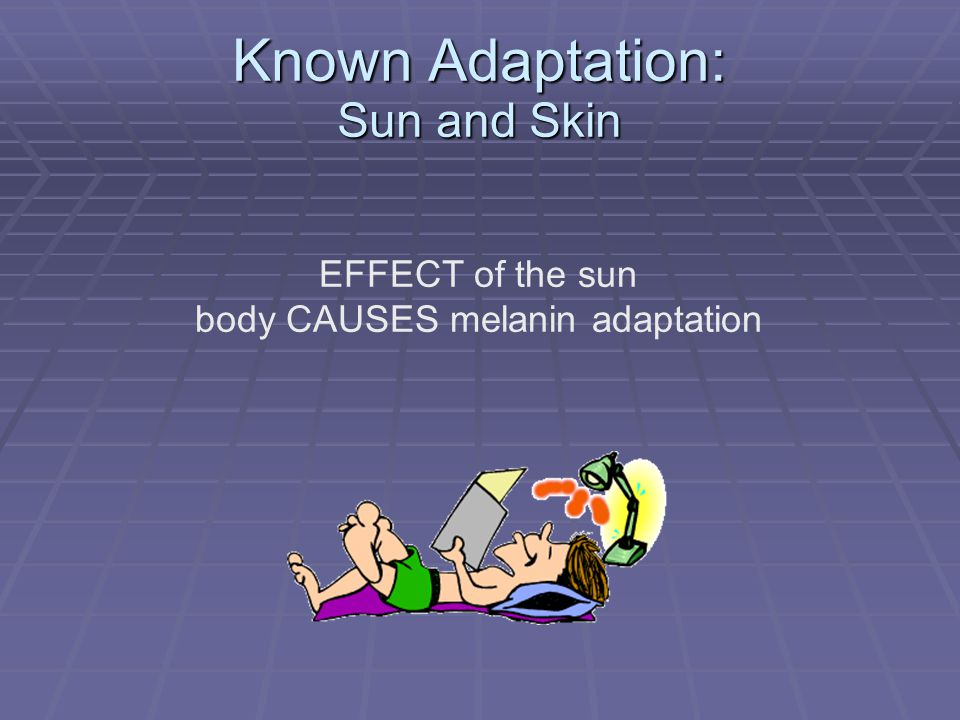 Known Adaptation: Sun and Skin EFFECT of the sun body CAUSES melanin adaptation