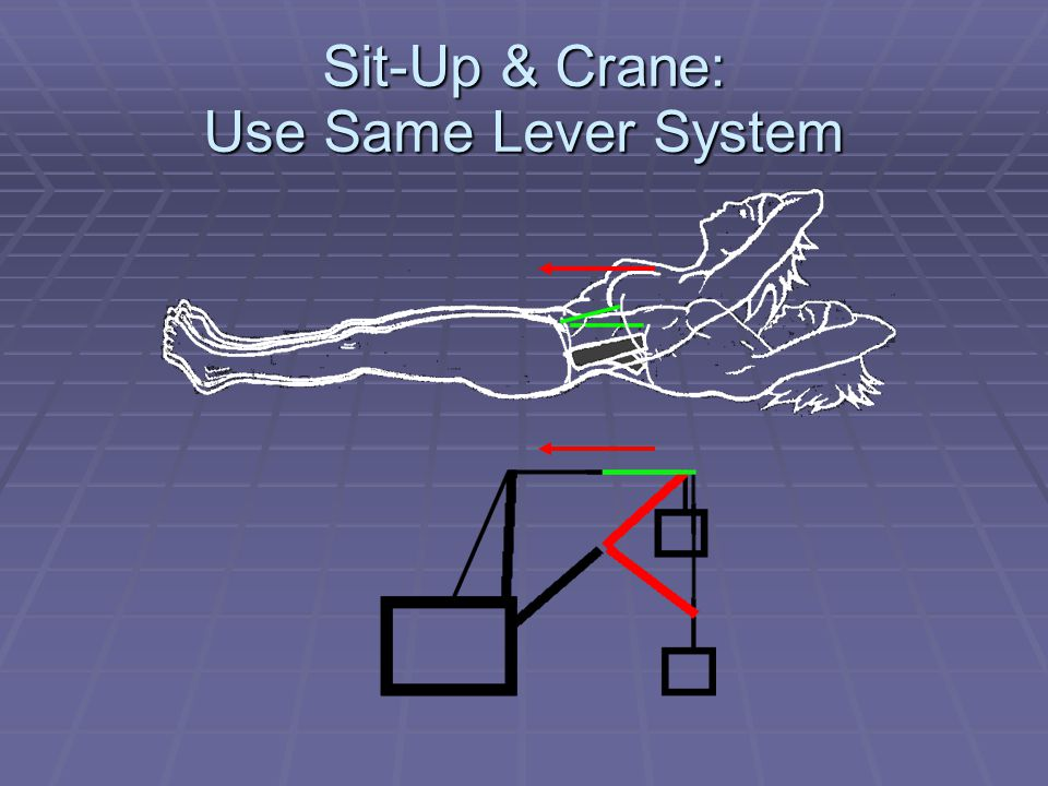 Sit-Up & Crane: Use Same Lever System