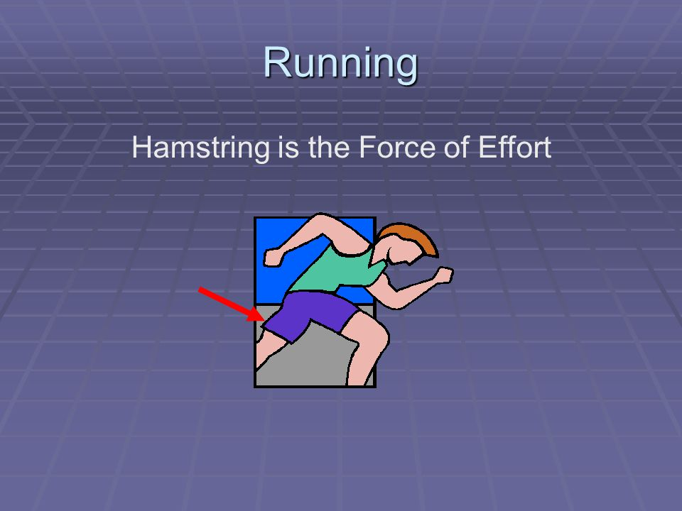 Running Hamstring is the Force of Effort