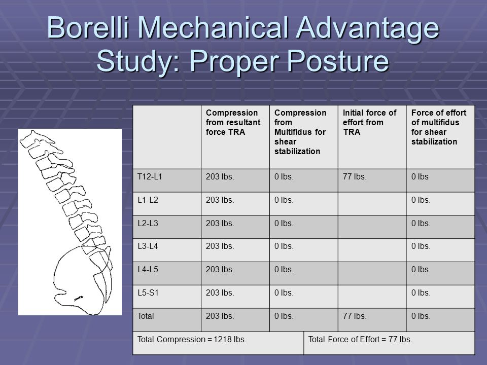 Borelli Mechanical Advantage Study: Proper Posture Compression from resultant force TRA Compression from Multifidus for shear stabilization Initial force of effort from TRA Force of effort of multifidus for shear stabilization T12-L1203 lbs.0 lbs.77 lbs.0 lbs L1-L2203 lbs.0 lbs.