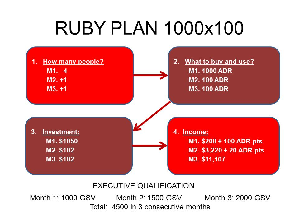 RUBY PLAN 1000x100 1.How many people? M1. 4 M2. +1 M3. +1 4. Income: M1. $200 + 100 ADR pts M2. $3,220 + 20 ADR pts M3. $11,107 3. Investment: M1. $10