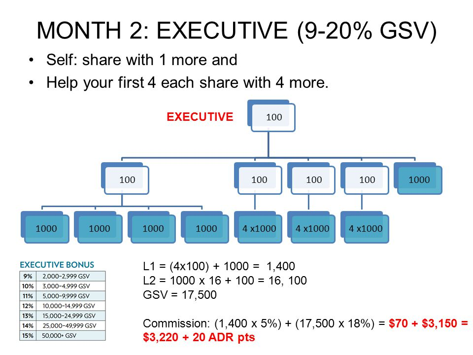 MONTH 2: EXECUTIVE (9-20% GSV) Self: share with 1 more and Help your first 4 each share with 4 more. 100 1000 1004 x1000 1004 x1000 1004 x10001000 L1