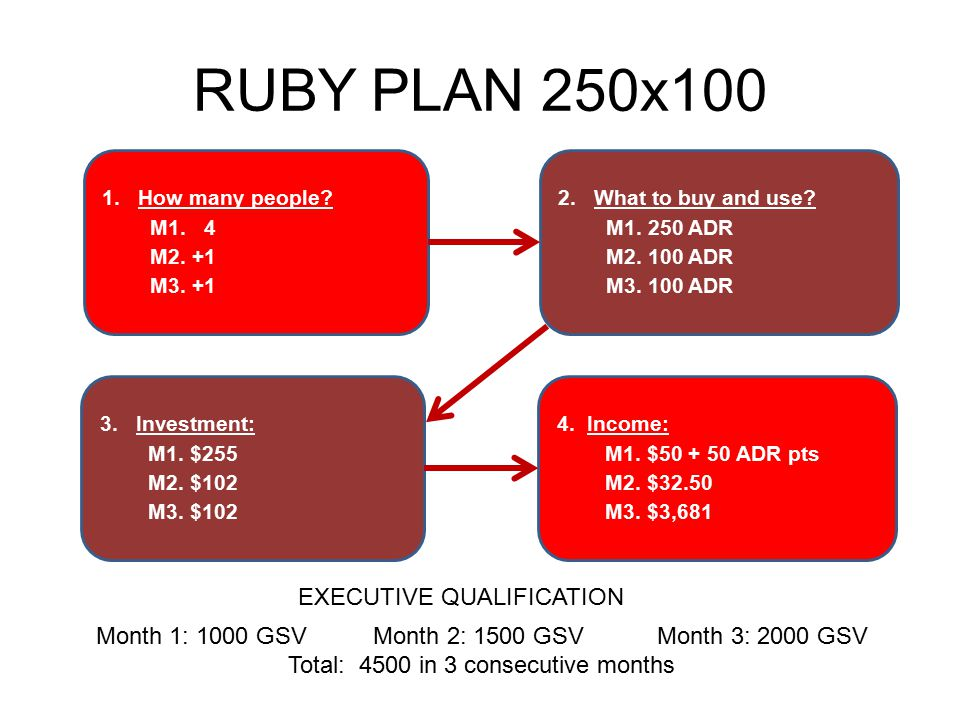 RUBY PLAN 250x100 1.How many people? M1. 4 M2. +1 M3. +1 4. Income: M1. $50 + 50 ADR pts M2. $32.50 M3. $3,681 3. Investment: M1. $255 M2. $102 M3. $1