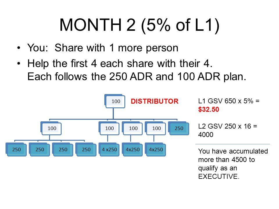 MONTH 2 (5% of L1) You: Share with 1 more person Help the first 4 each share with their 4. Each follows the 250 ADR and 100 ADR plan. 100 250 1004 x25