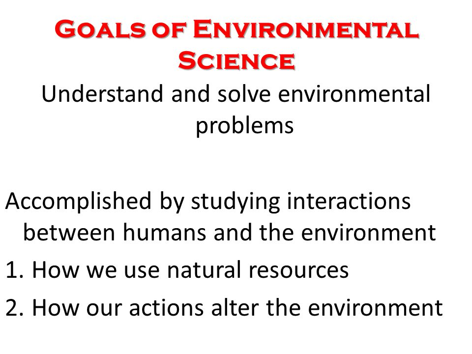 What is the Environment.